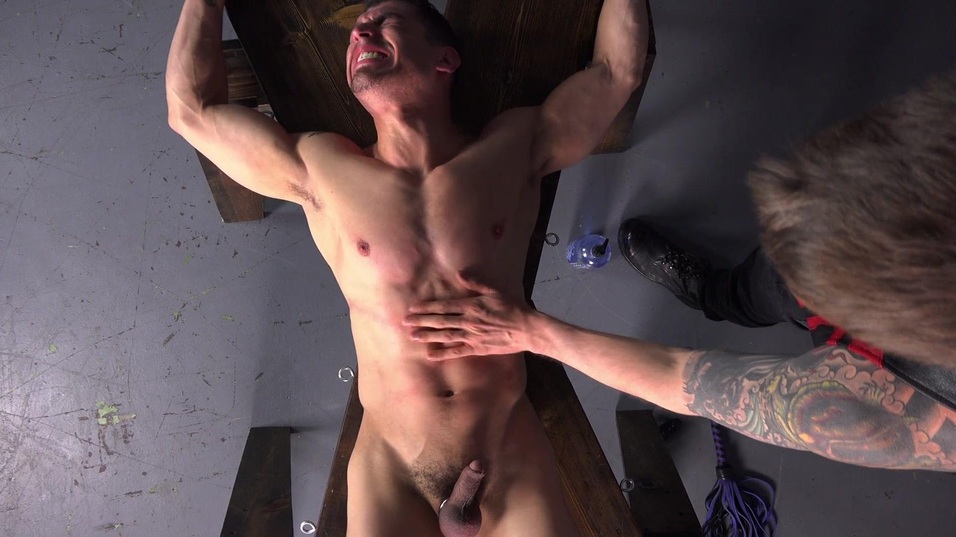 Sexy michelle mccool porno