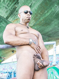 Bull Daddy Diesel