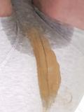 Panty poop - album 33