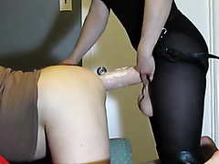 Dominant female takes care of her partner