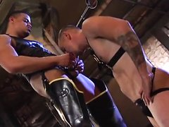 Gay Leather Movie (Part 2)