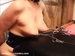 Tit whipping with nettles