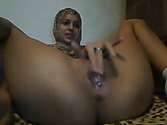 Arabian cam model