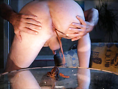 diarrhea auf Spiegeltisch