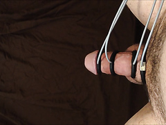Cock and electro torture