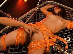 See see 135-Torture Masochist toy