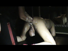 German Fist Pig - Elbow & Double