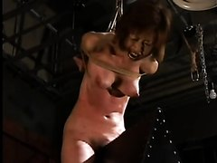 Japanese suspension whipping