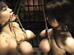 Zwei japanische Sklavinnen werden an ihren eng verschürten Brüsten aufgehängt