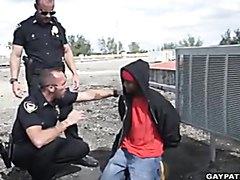 Gay cops 2