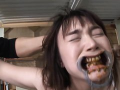 Japanese painful BDSM with scat