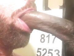 Eleven inch dick getting sucked off at the glory hole