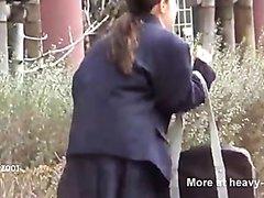 Japanese schoolgirl public poop accident
