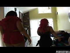 Pinky Presents Bootylicious Scene 3