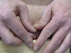 Gay - Cock Torture Private Amateur - Neddle & Nail