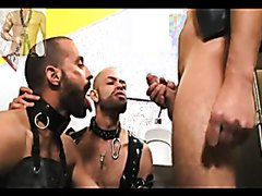 Toilet Slaves Drink Piss and Get Fucked