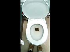 Girl Drops A Thick Log In The Toilet