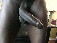 ✭ MANDINGO SHOW ✭