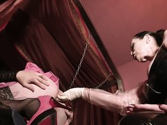 Femdom Fists Male Tranny