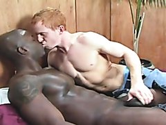 Ginger And darksome chocolate