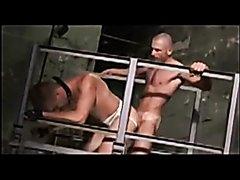 European master dominates slave