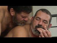 bear daddies make love