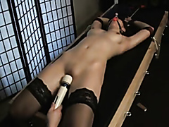 Tied up babe is totally dominated