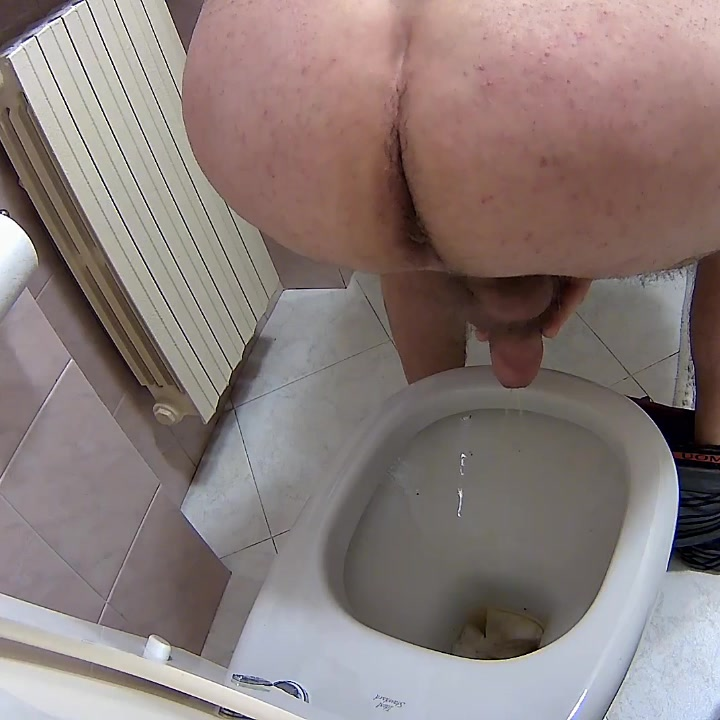 husband pisses and shitter