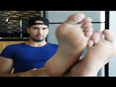 Ants big feet