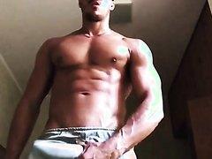 Diego brazilian stud - solo