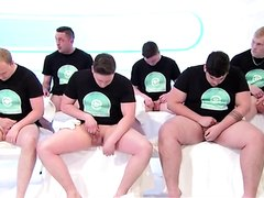 Team group exploring the testicles