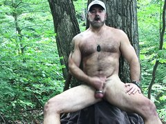 bear jerking off in the woods