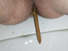 Noisy dump on my toilet