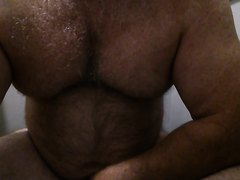 Big-Bellied Bear Rips Ass on Toilet