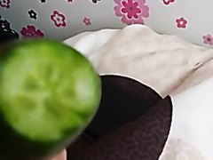 Lucky cucumber