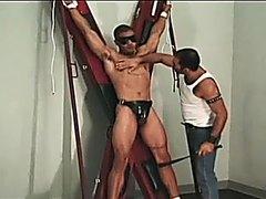 GAY SEX SLAVE 0115