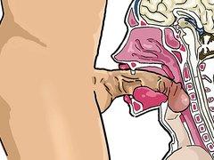 Deepthroat cross section