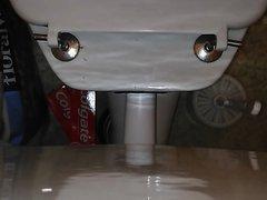 Poo on my toilet new angle
