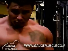 Gym Muscle Stud 2