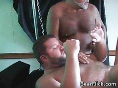 Fuck a bear porn star
