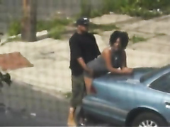 Couple caught having sex on the trunk