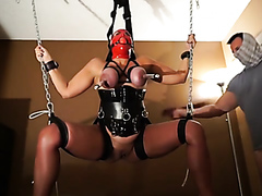 Suspended and tied up to be played with