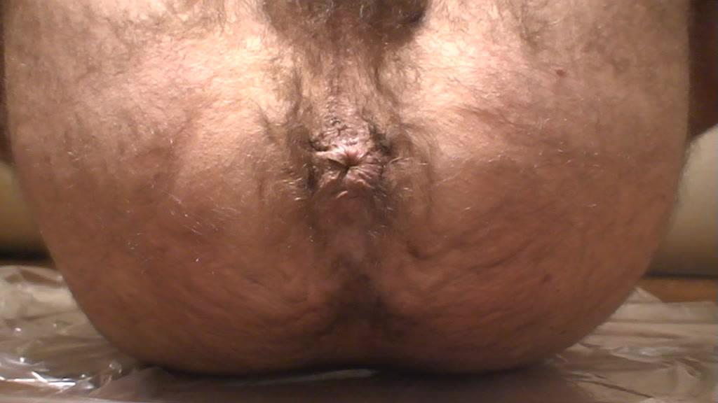 Gay porn website Famous transsexual women