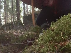 Dump in the woods