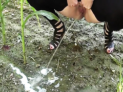 Sexy girl pissing in a corn field
