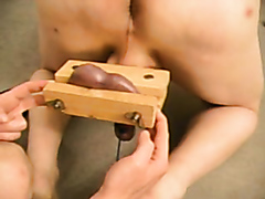 Kinky mistress squeezes her slave's balls