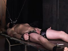 hung by mouth gag and a hard cock cropped clamped
