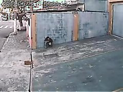 Man Taking A Shit In The Street - video 3