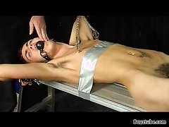 taped down for wax electro cum