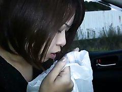 Car vomit